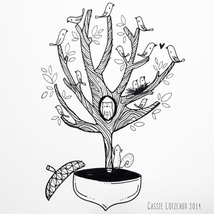 Squirrel In Tree Drawing
