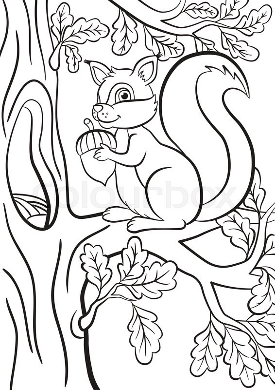 566x800 Coloring Page Little Cute Squirrel Sits On The Banch Of A Tree