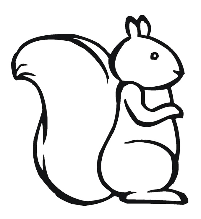 Squirrel Outline Drawing at GetDrawings.com | Free for personal use ...