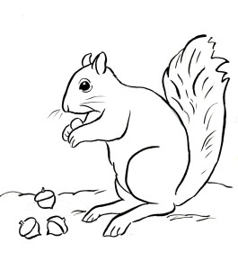 2480x2480 Enchanted Forest Colouring Competition 265x300 Free Coloring Pages And Reference Pictures
