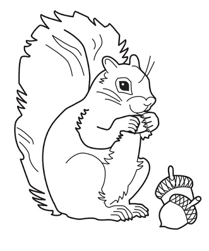 Squirrels Drawing at GetDrawings.com | Free for personal use ...