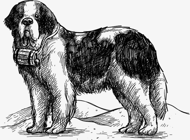 650x477 Dog Vector, Dog, Thing, St. Bernard Dog Png And Vector For Free