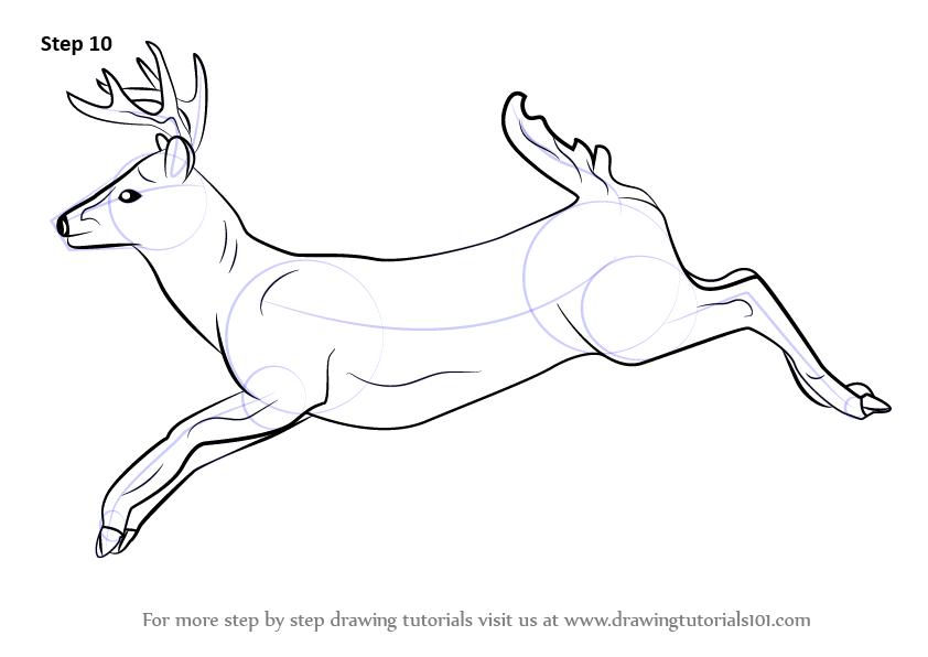 842x596 Resultado De Imagen Para Deer Drawing Ideas Para Tatuajes