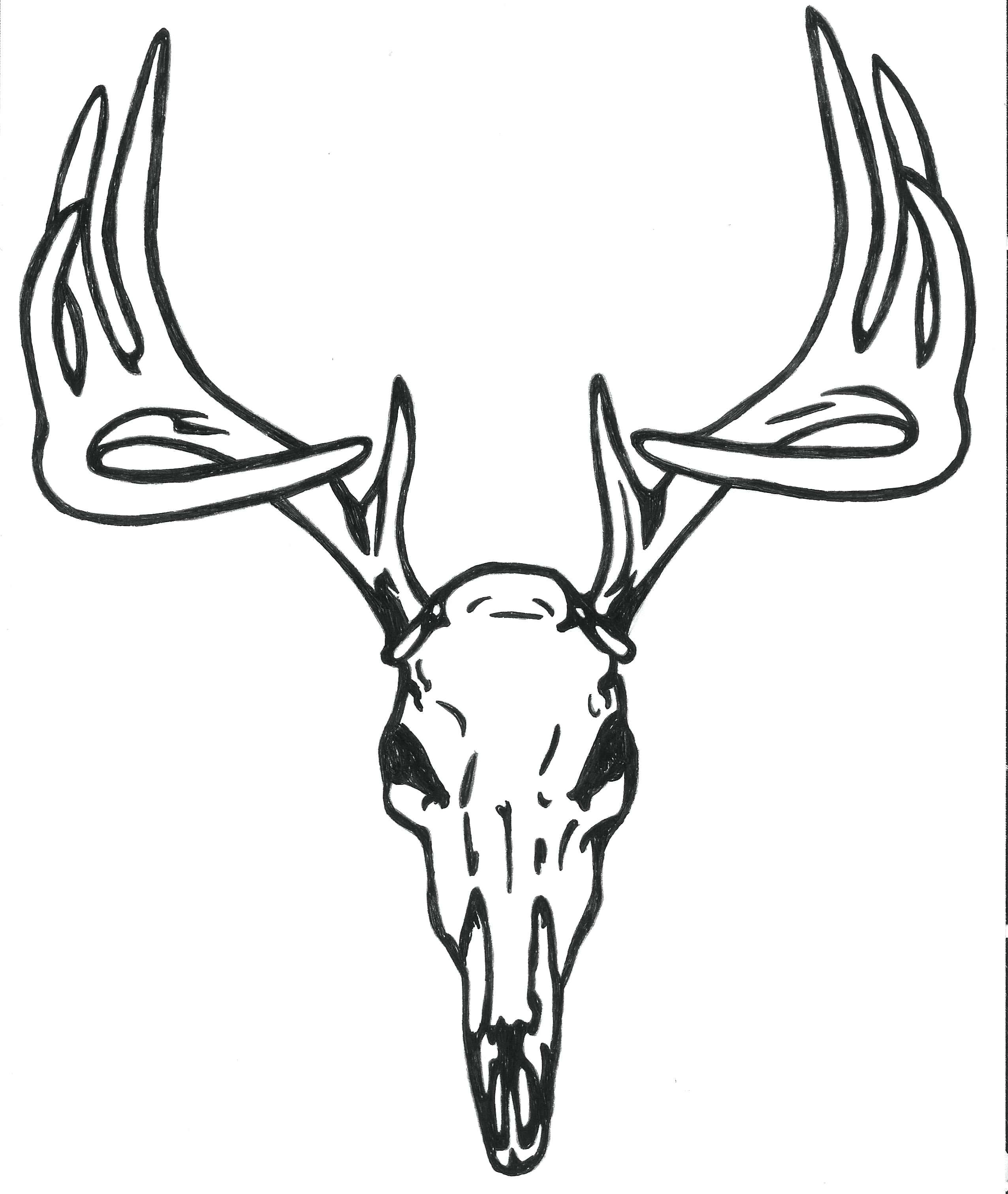 2552x3023 Coloring Deer Head Coloring Pages On Skull Logo Face. Deer Head