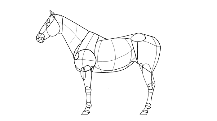 700x391 How To Draw Horses Step By Step Instructions