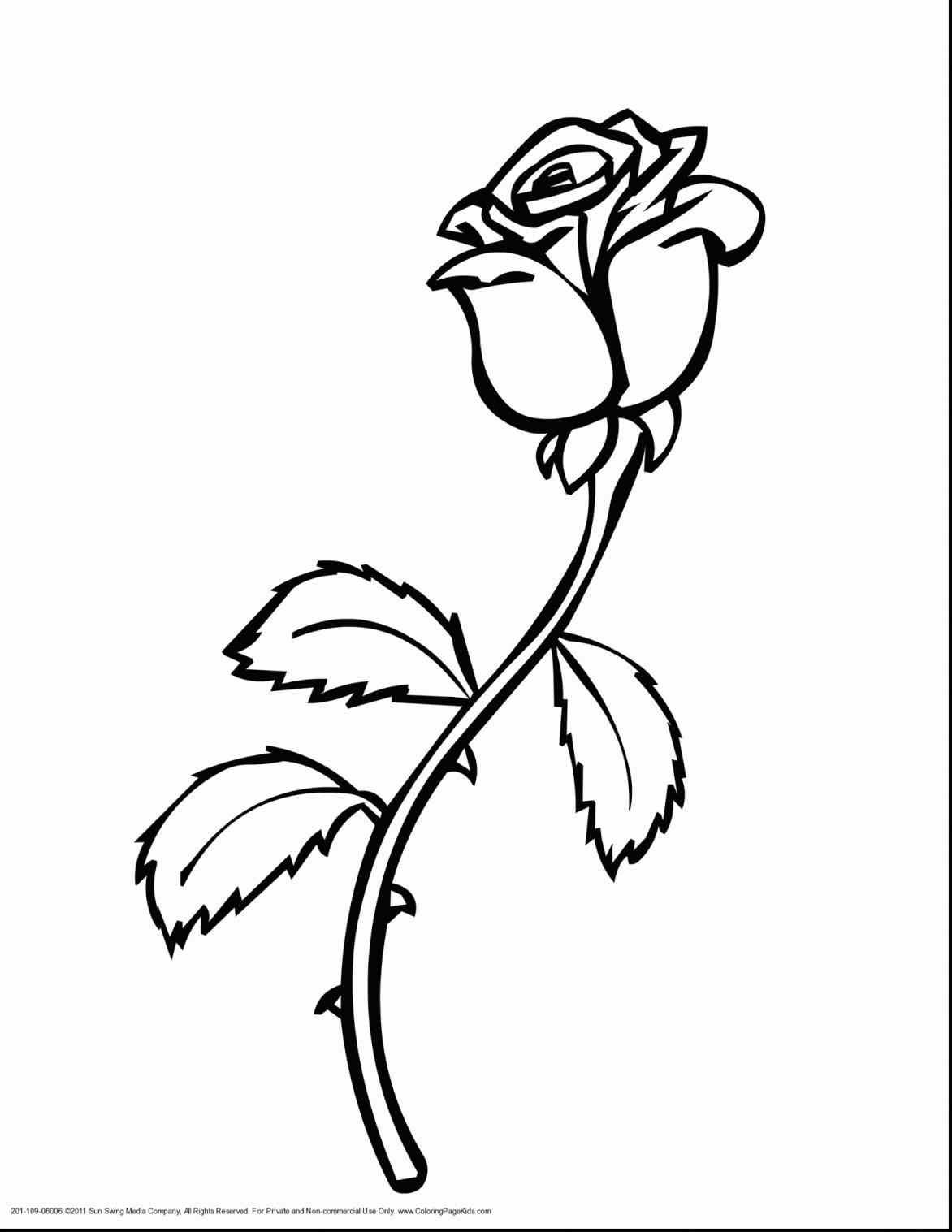 1172x1517 Beast Rose Coloring Pages Beautiful Drawing Printable Disney