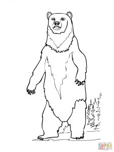 225x300 Funny Brown Bear Cub Coloring Pages