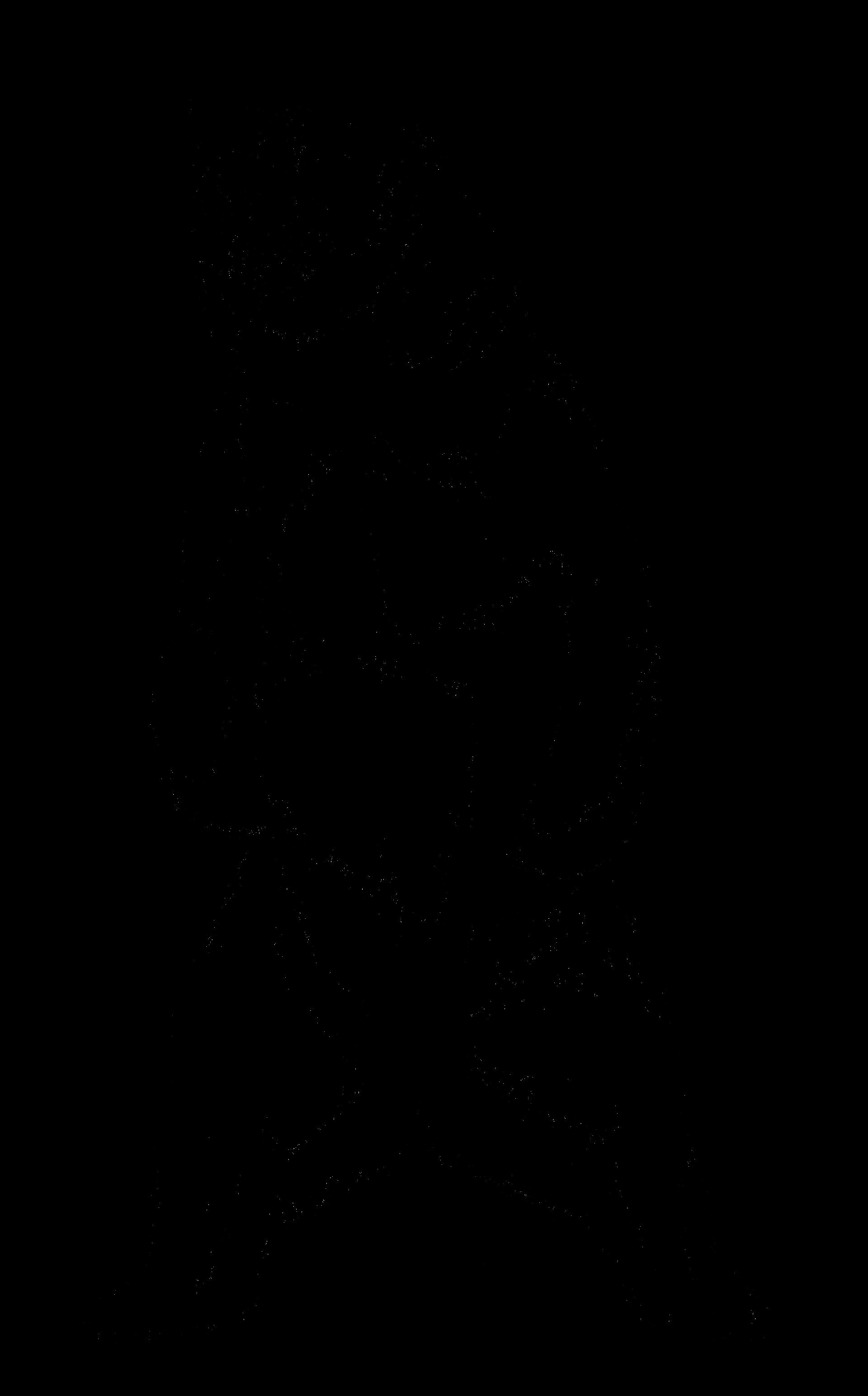 1920x3086 Nelson Yanowitz