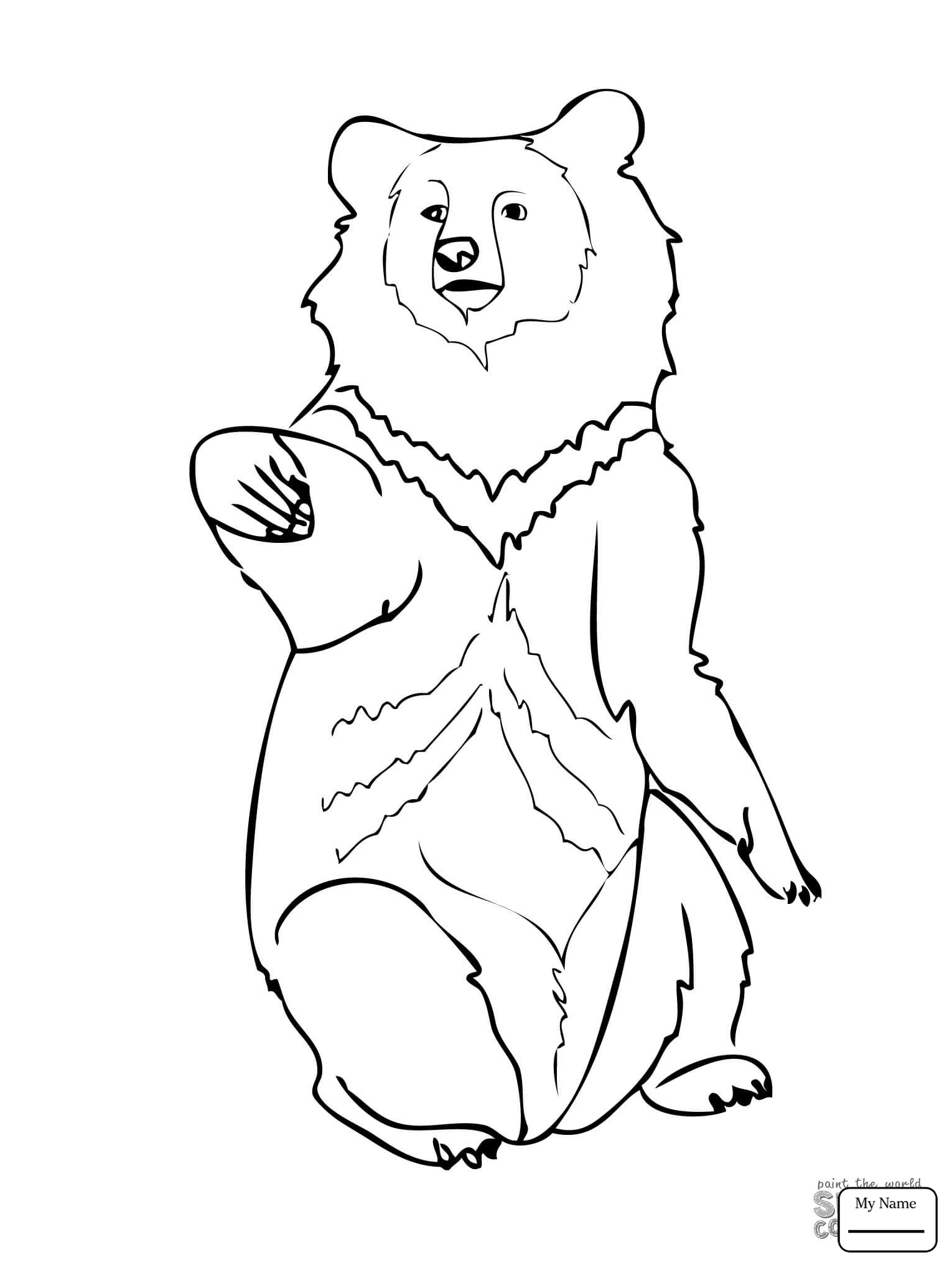 1530x2040 Coloring Pages Mammals Asia Black Bears Asia Black Bear Standing