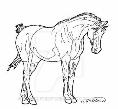 400x369 Horse Standing Head Arched Lines By Dragonfyrestudio