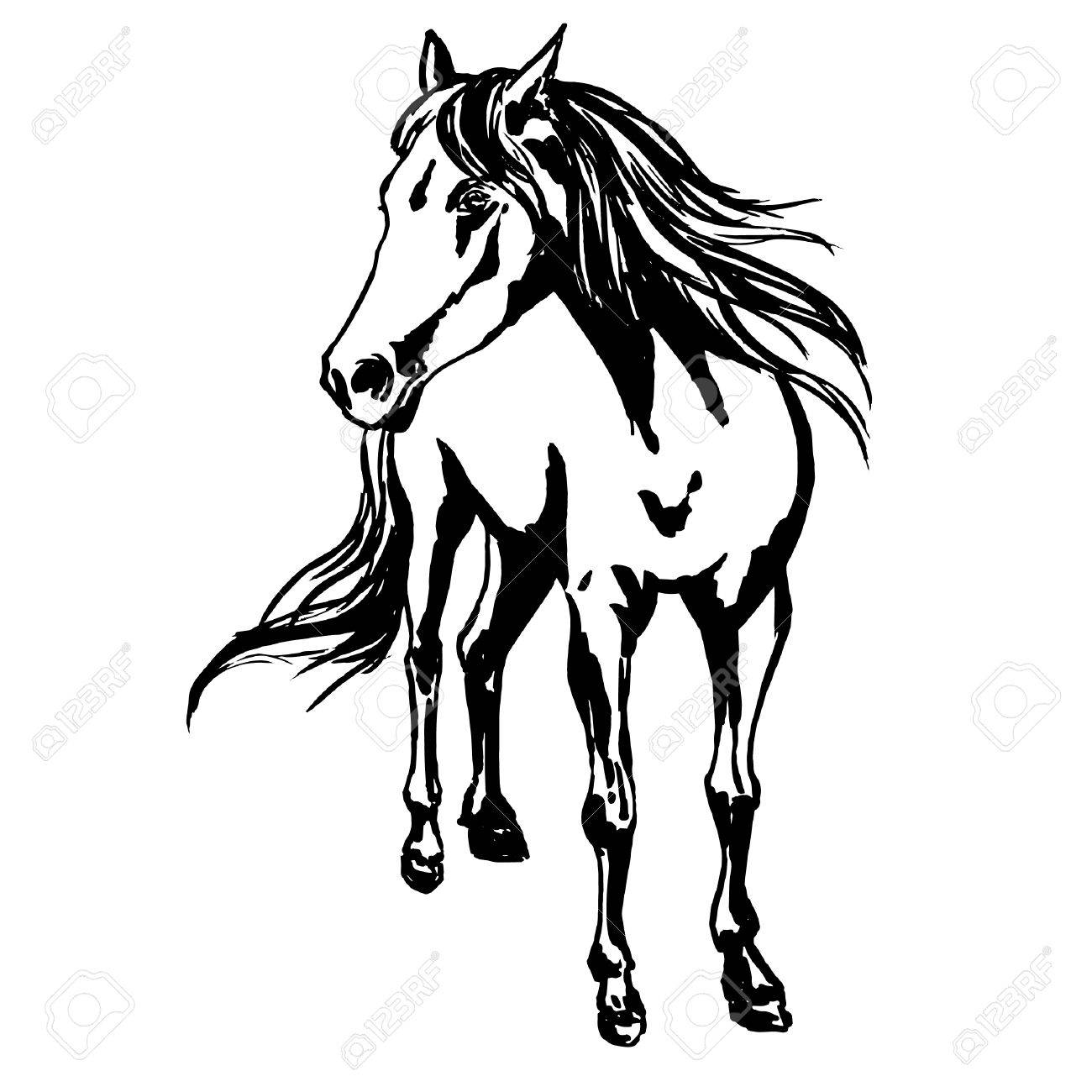 1300x1300 Proud Horse, Standing On The Pasture, Silky Mane And Tail Are
