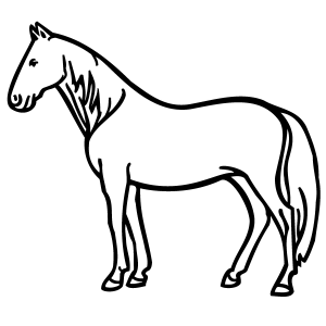 300x300 Standing Horse Coloring Page