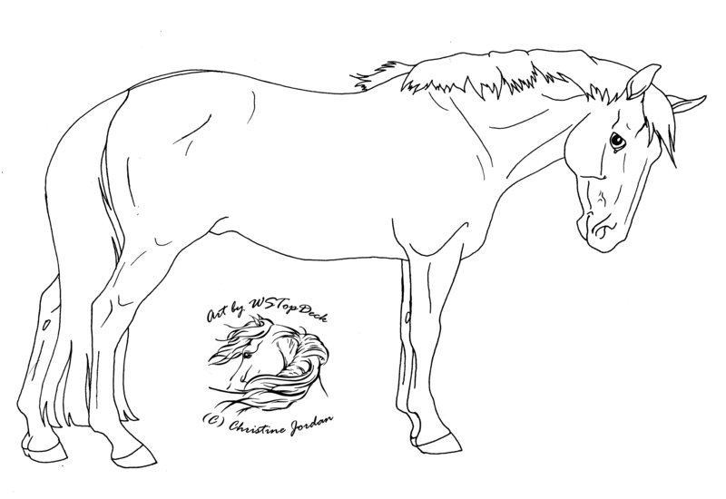 800x550 Standing Horse Lineart Da Use By Wstopdeck