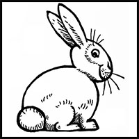200x200 How Draw Bunny Rabbits Drawing Tutorials Amp Drawing Amp How