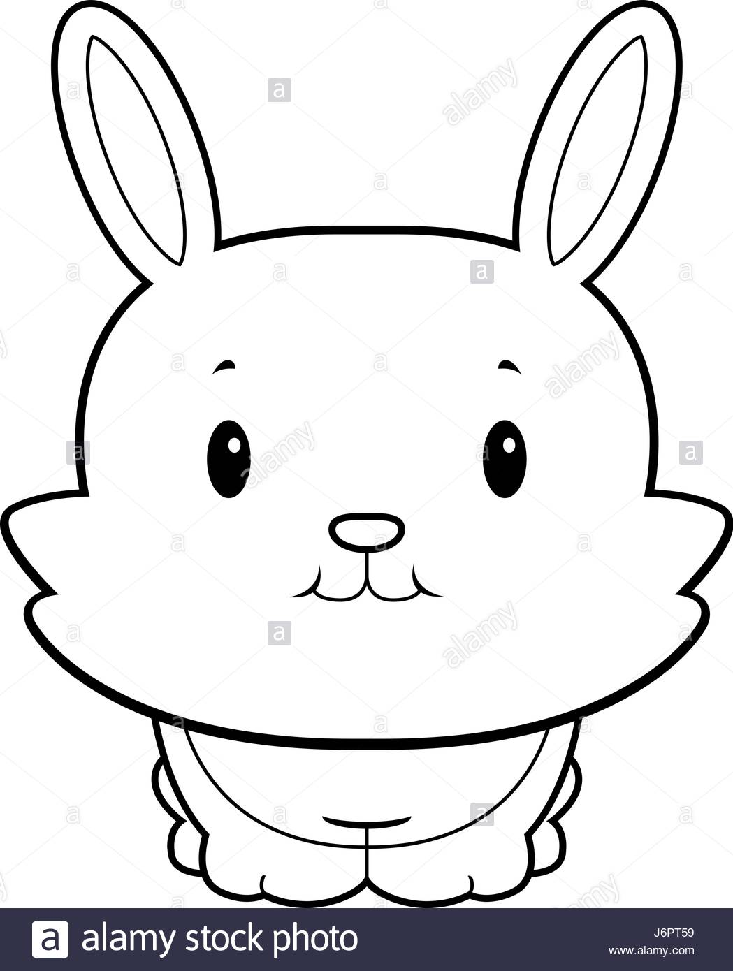1049x1390 Baby Bunny Black And White Stock Photos Amp Images