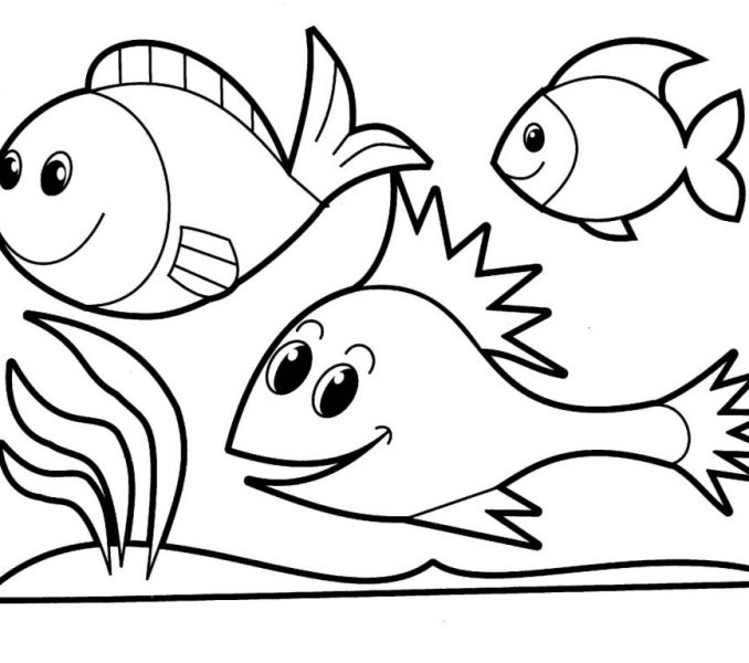 678x600 Picture For Colouring For Kids Coloring Page