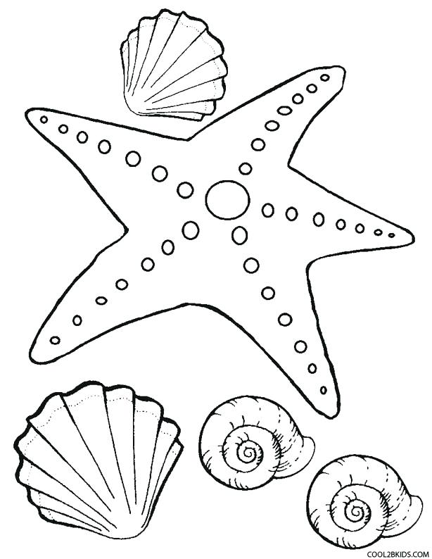 614x794 Starfish Pictures To Color Starfish Coloring Page For Kids