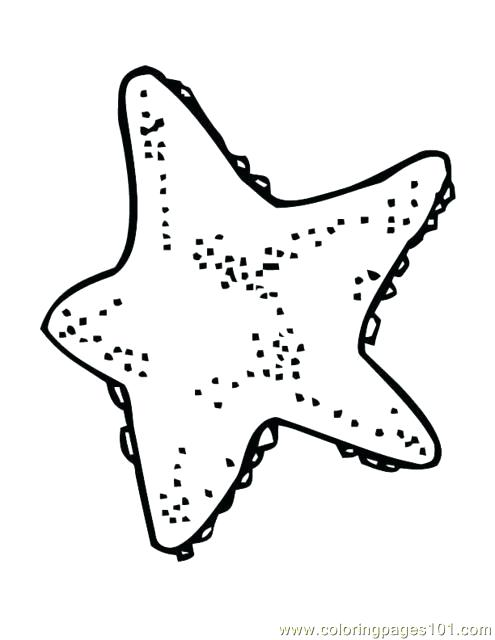 495x640 Starfish Pictures Color Starfish With Big Eyes Coloring Page