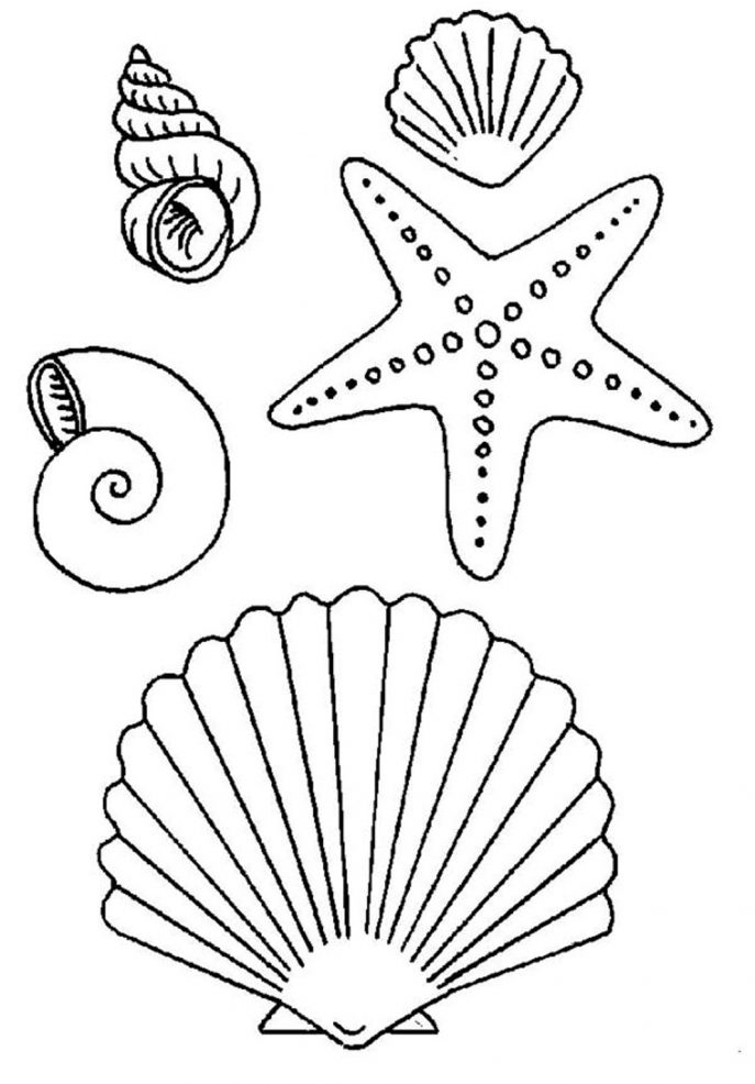 687x986 Starfish Coloring Pages Printable Tags Starfish Coloring Pages