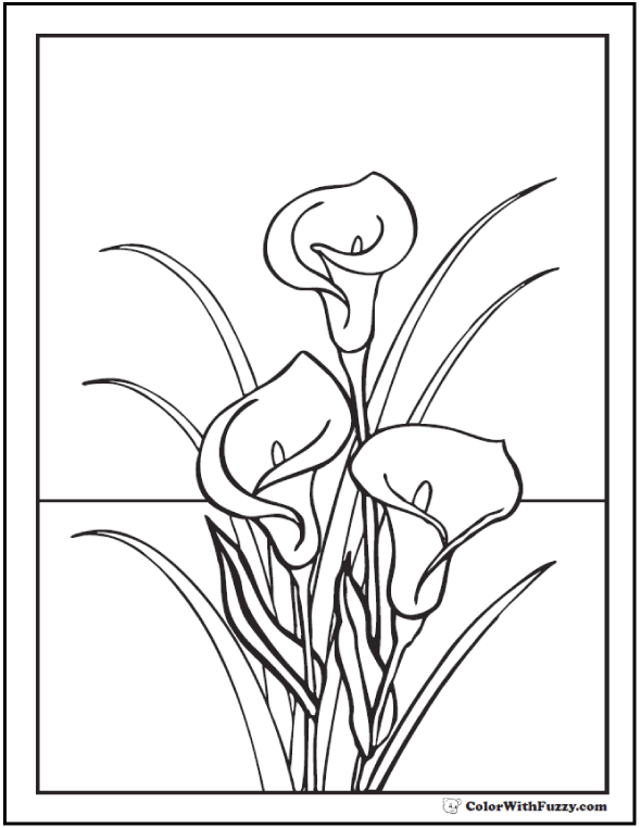 590x762 Lily Coloring Pages Customize 12 PDF Printables