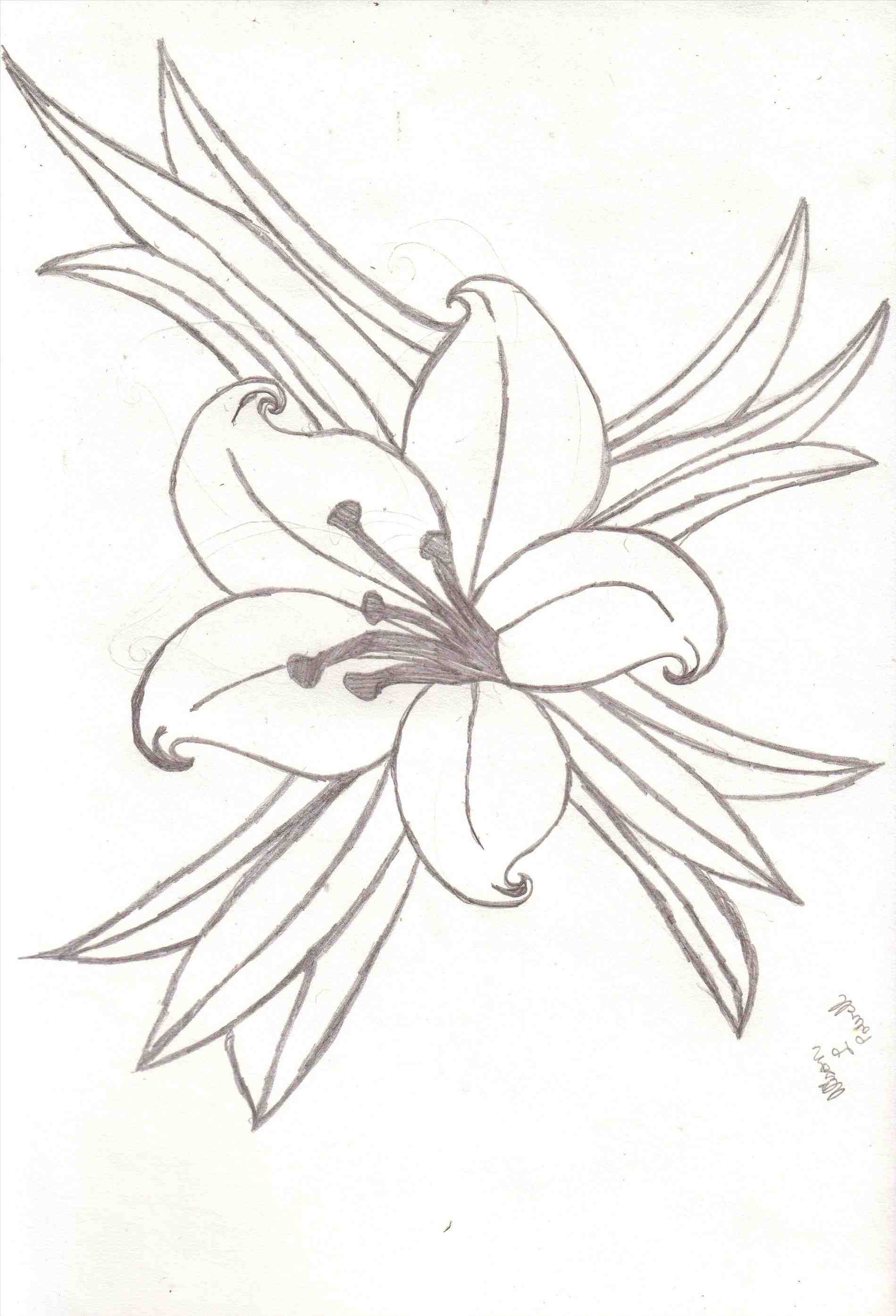 1899x2787 Water Lily Placement Near Lily Pads. How To Draw Flowers Water