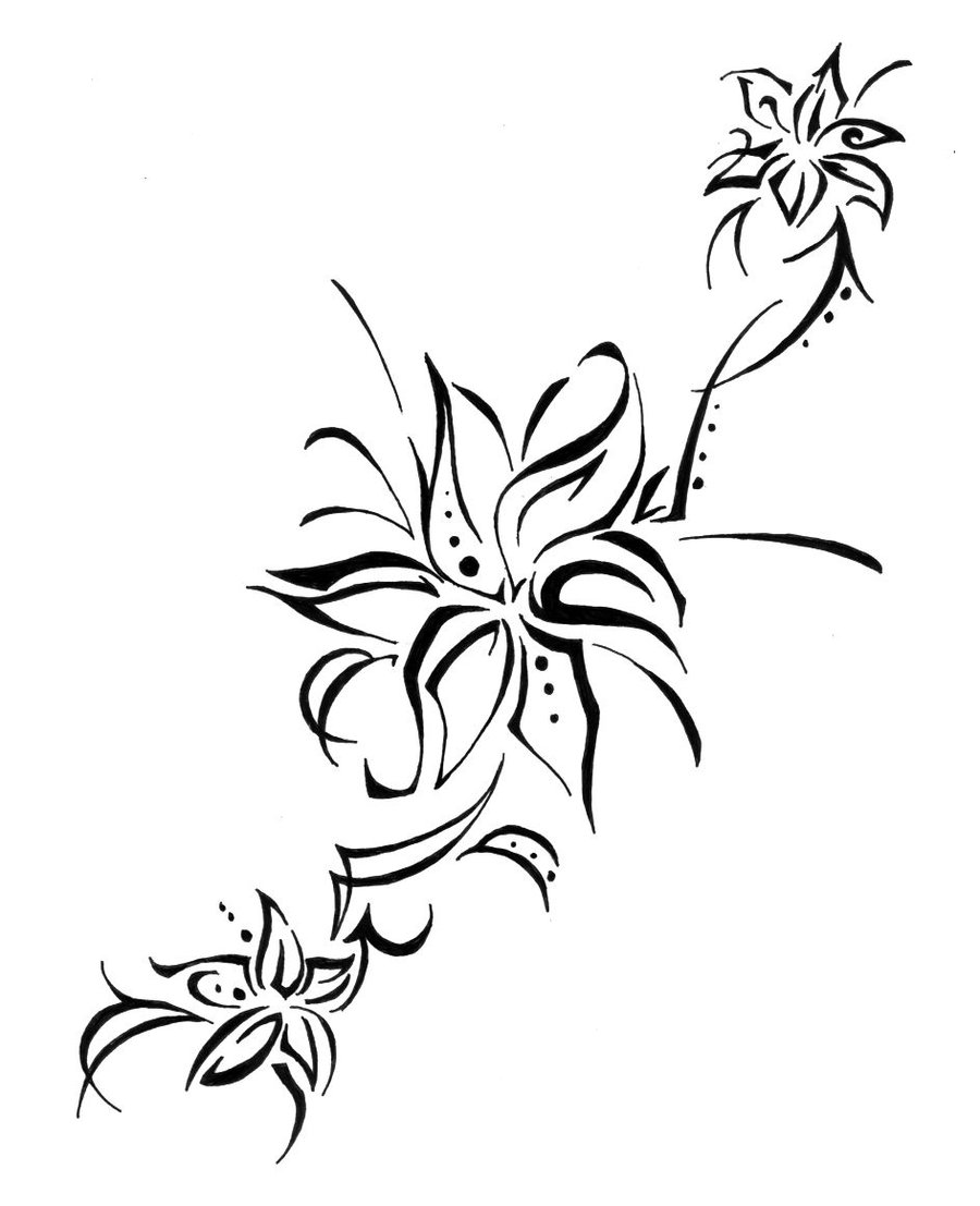 Stargazer lilly drawing at getdrawings free for personal use 900x1107 lily flower tattoo drawing izmirmasajfo