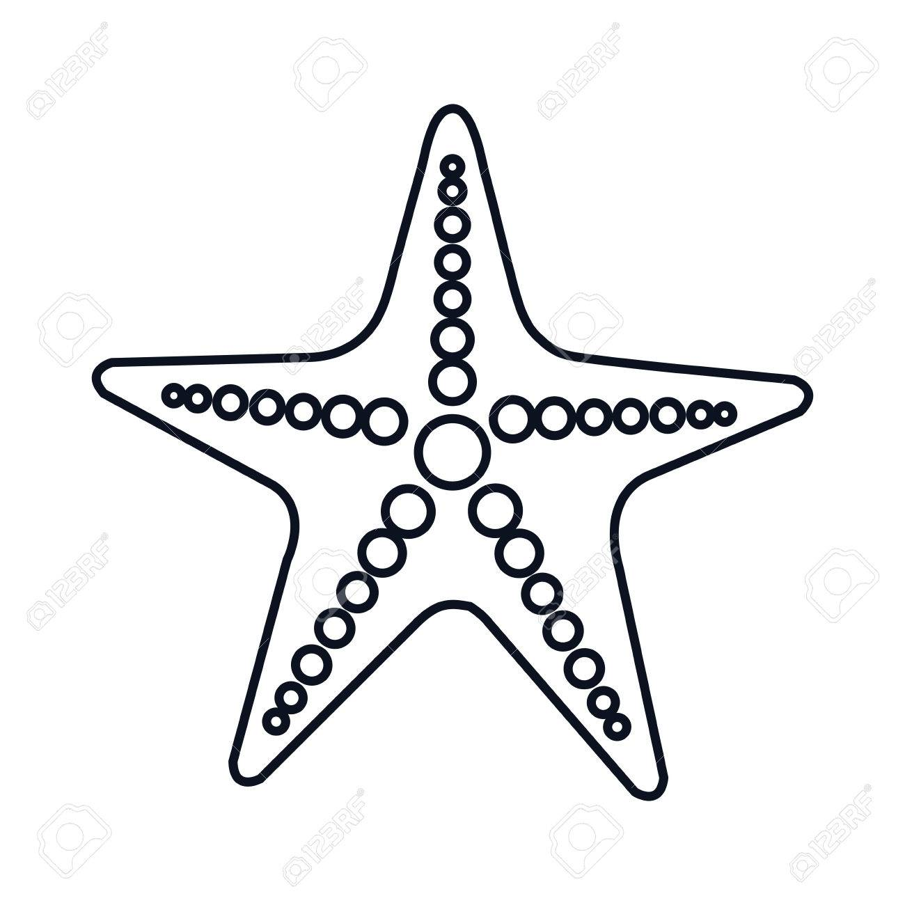 1300x1300 Sea Star Starship Marine Animal. Oceand And Sea Symbol. Vector