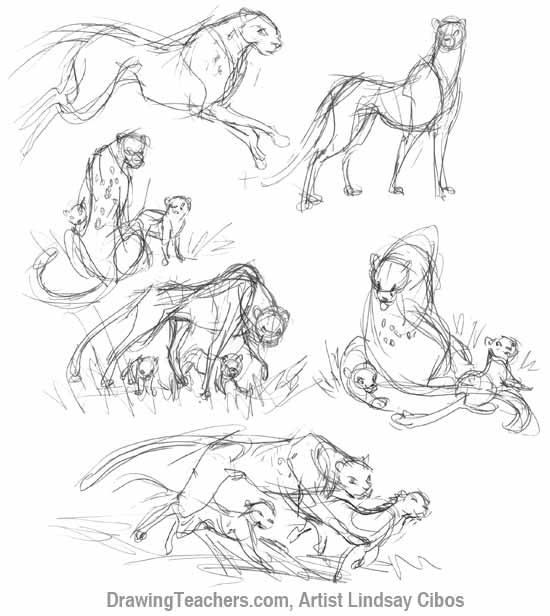 550x616 How To Draw A Cheetah Step By Step