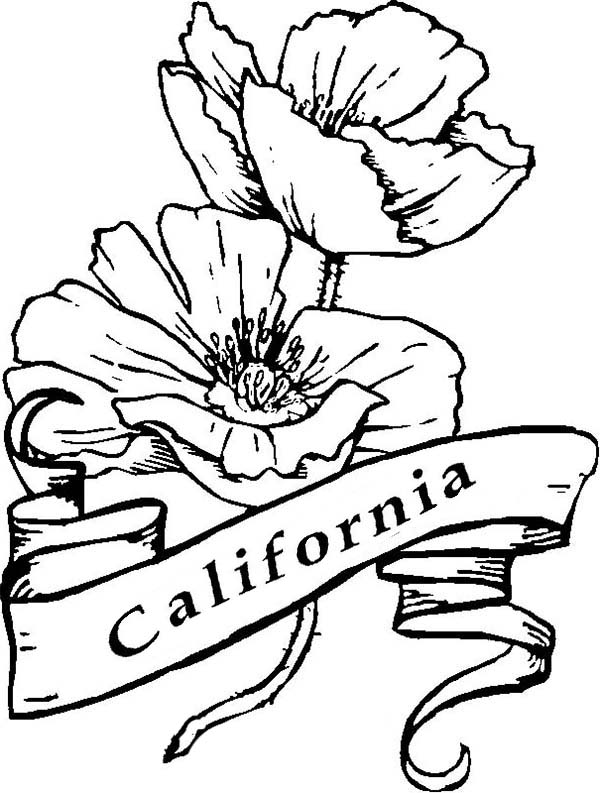State Of California Drawing At Getdrawings Free For Personal