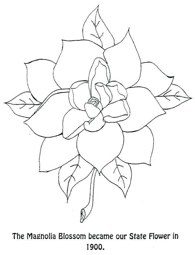 florida flag coloring page - state of florida drawing at free for