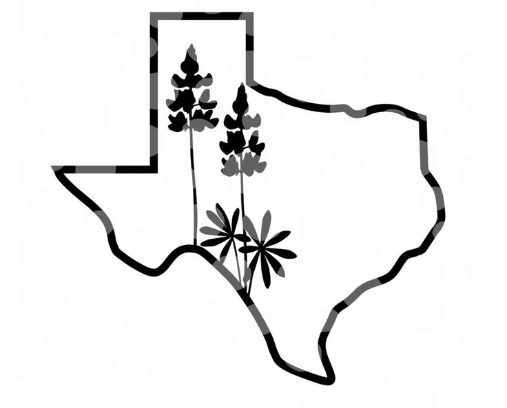 736x593 The Best Outline Of Texas Ideas On State Of Texas