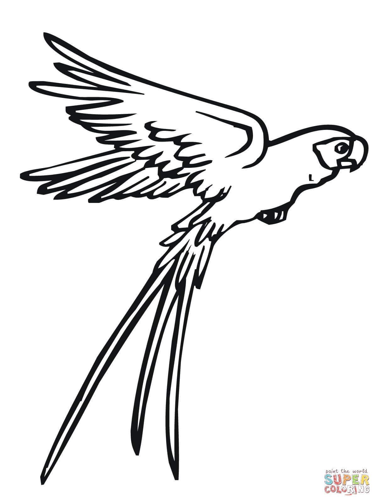 1200x1600 Flying Parrot Coloring Page Free Printable Coloring Pages