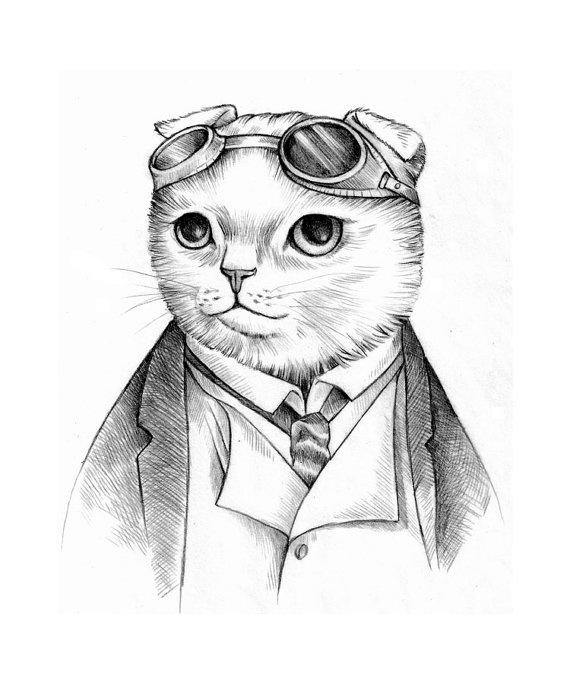 570x684 30 Best Steampunk Cats Images On Steampunk Cat, Cats