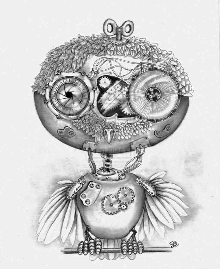 Steampunk Owl Drawing