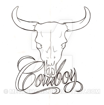 Steer Head Drawing