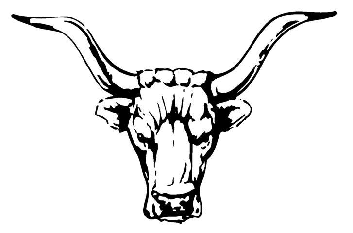 727x480 Taurus The Bull Symbol Taurus!!!!!!! Taurus