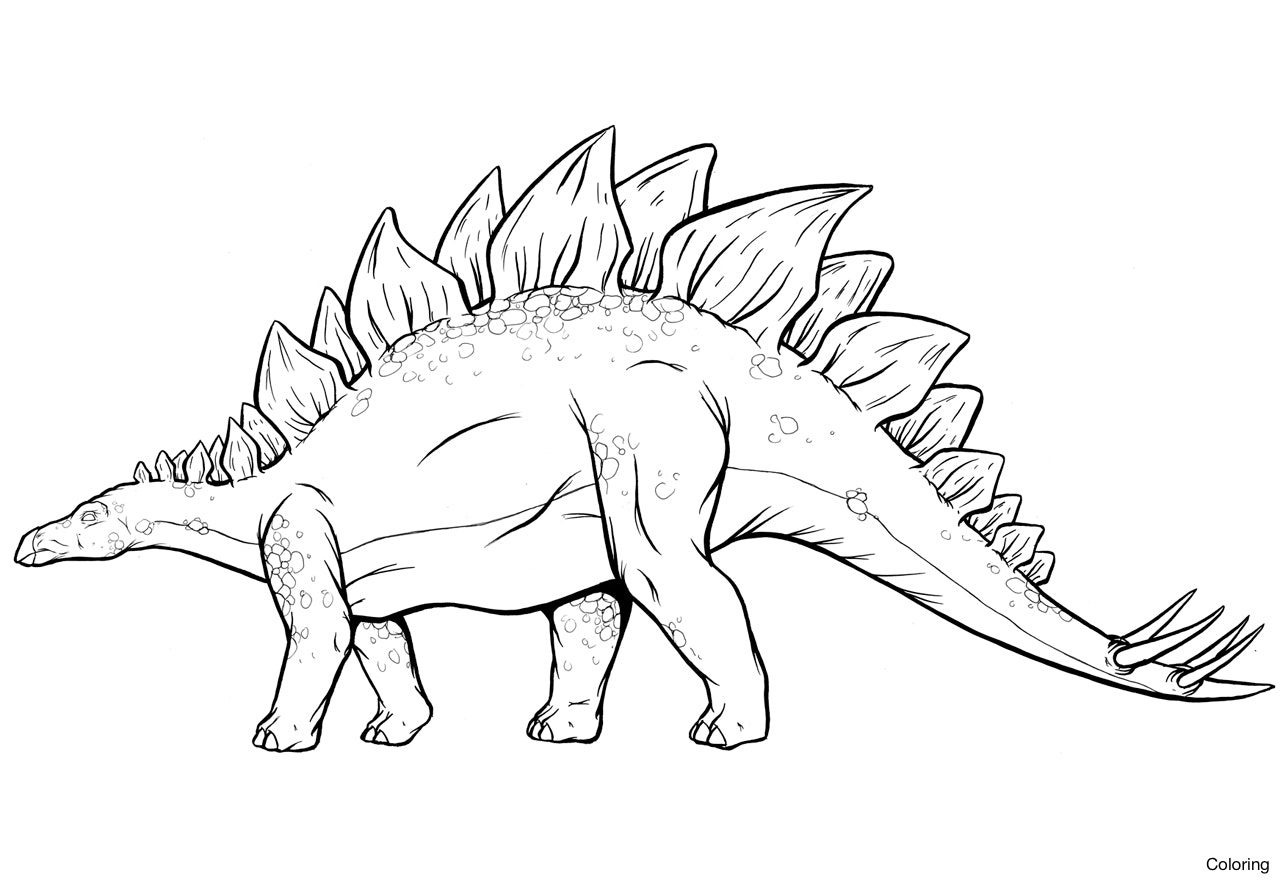 1280x880 Stegosaurus Coloring Page How To Draw A Click The Dinosaur 17f