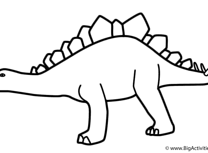 678x500 Stegosaurus Pictures To Color Coloring Page Ideas