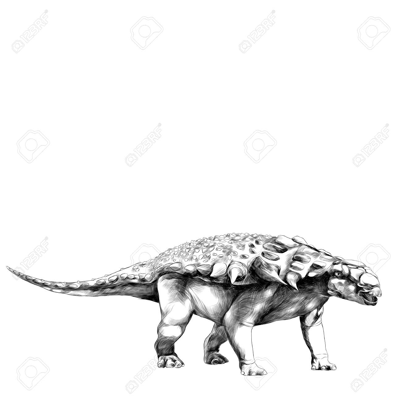 1300x1300 Dinosaur In Full Growth Stegosaurus Armadillo With Spikes On