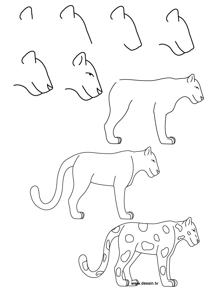 768x1024 How To Draw Simple Learn How To Draw A Jaguar With Simple Step