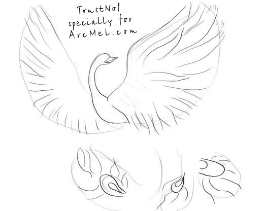 520x416 How To Draw Phoenix Step By Step