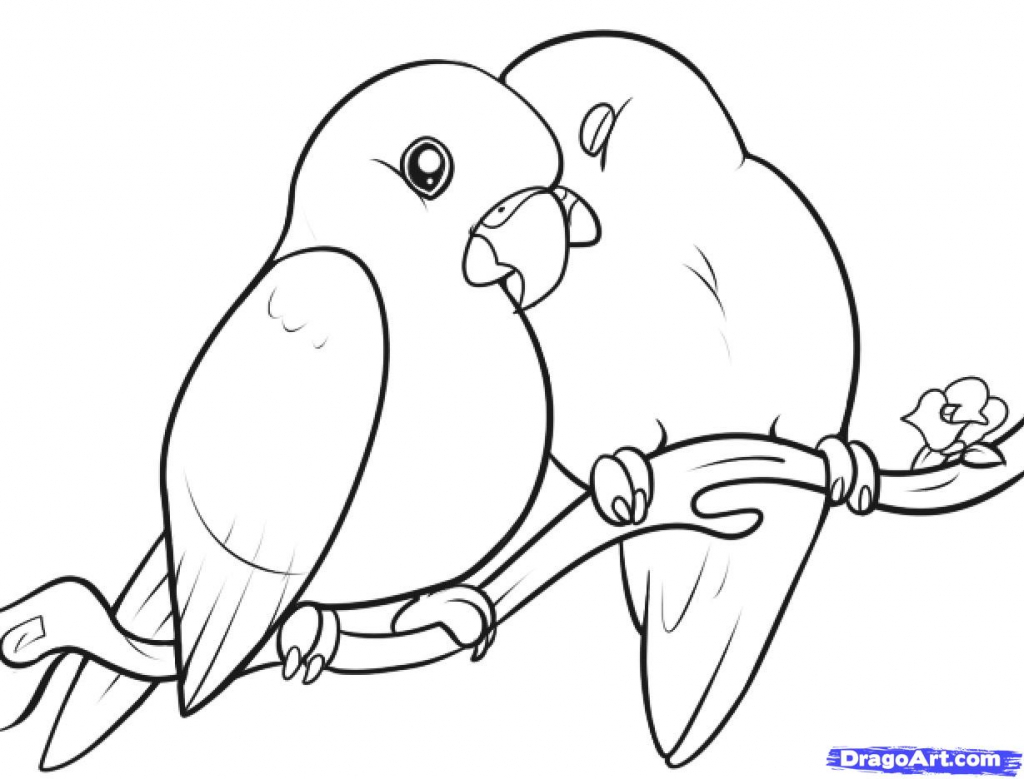 1024x779 How Draw A Bird How To Draw Lovebirds Step Step Birds Animals Free