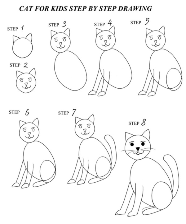 Step By Step Cat Drawing