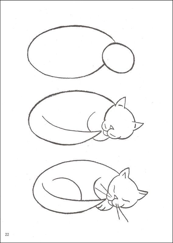 569x800 How To Draw Cats Drawing Techniques Cat, Drawings