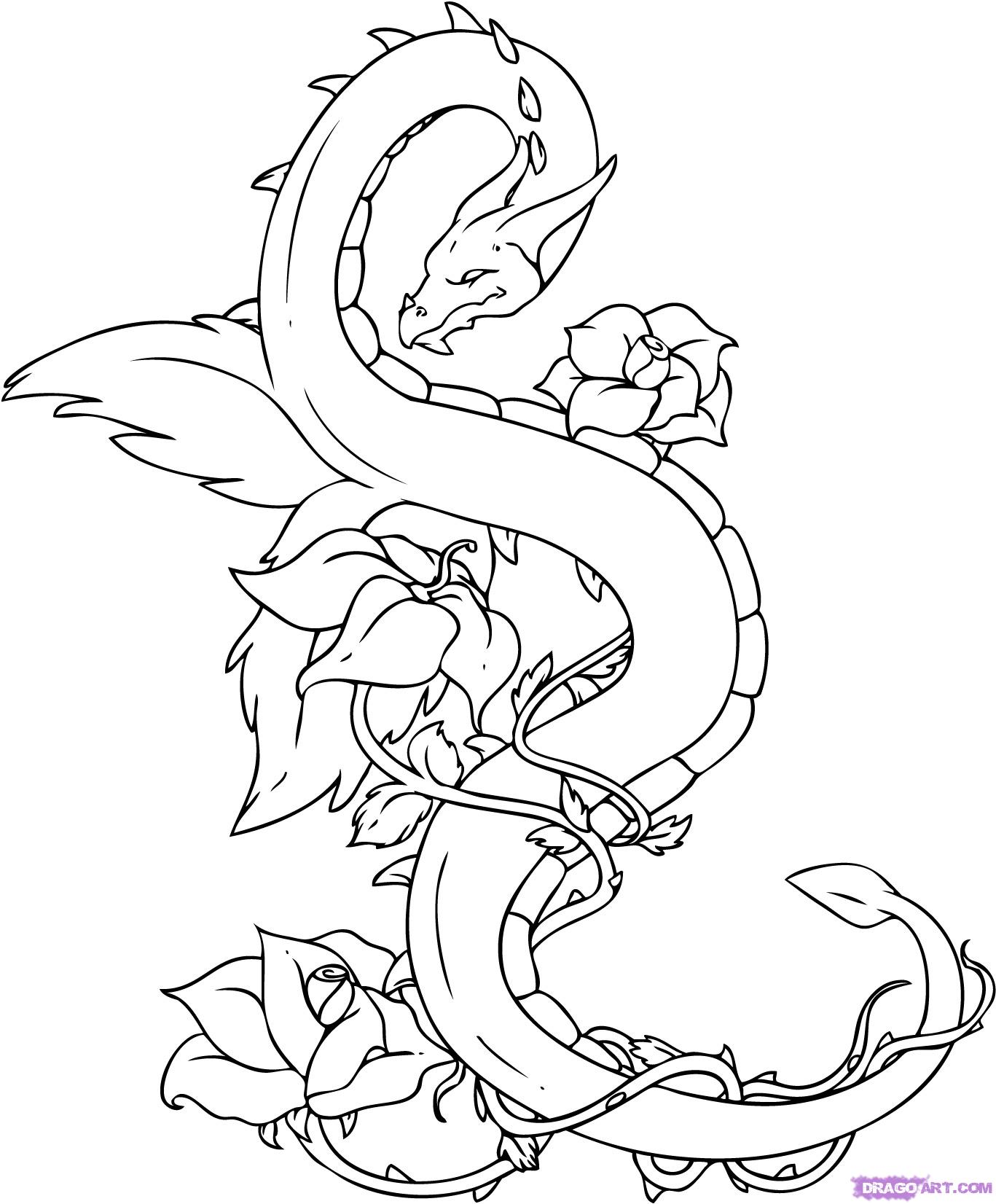 1367x1652 Drawn Water Dragon Step By Step