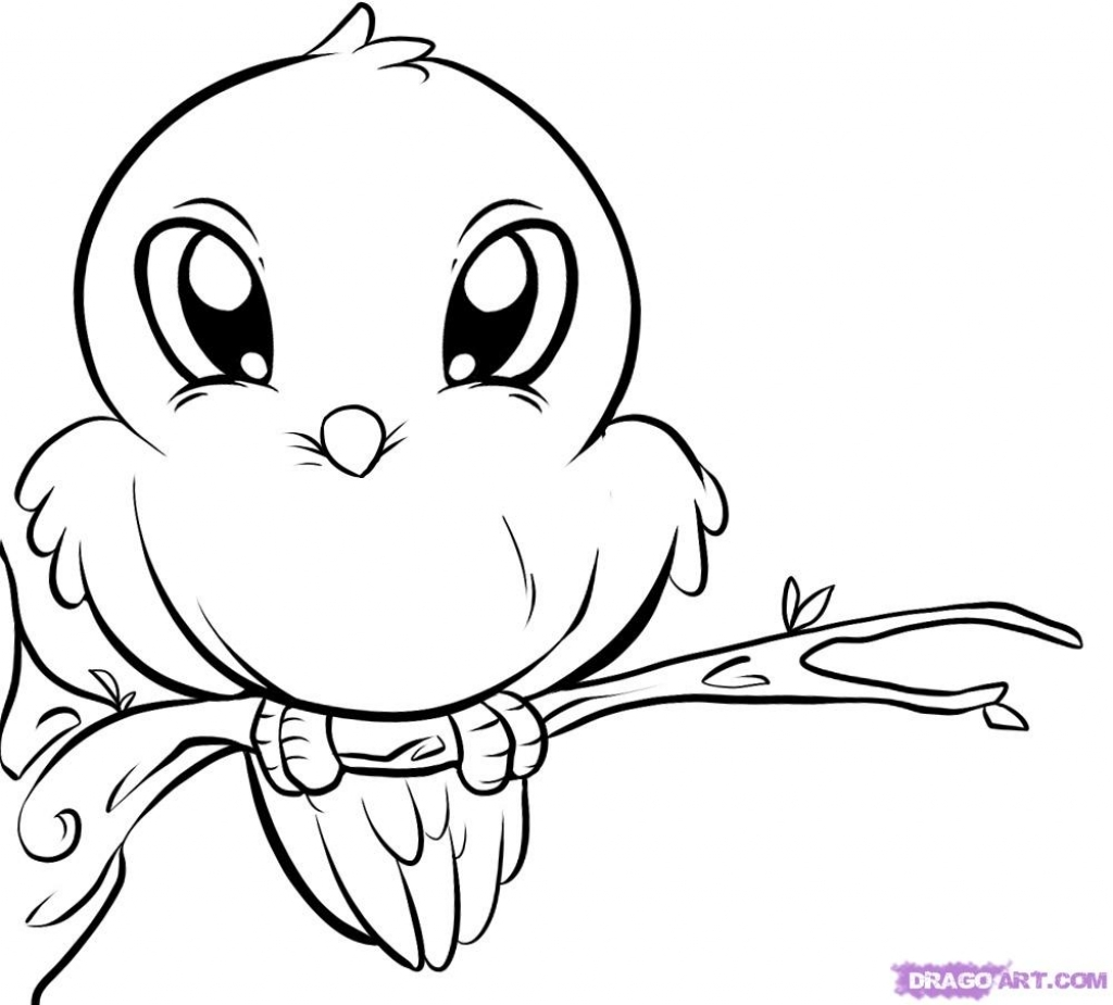 1024x925 Cute Animals Drawings How To Draw A Bird Step Step Birds Animals