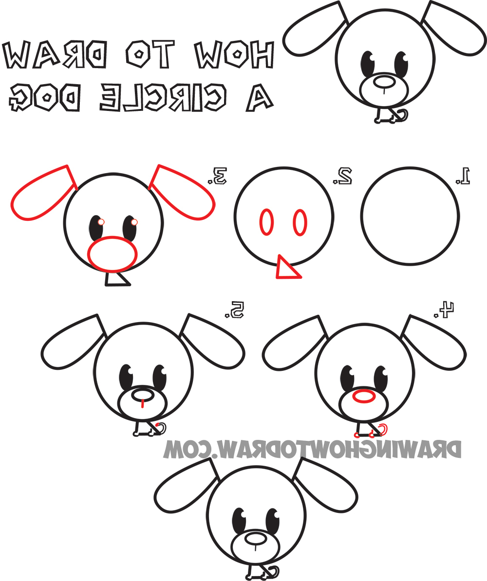 1000x1194 Drawings Animals Step By Step Big Guide To Drawing Cute Circle