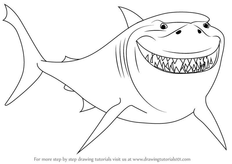 800x566 Learn How To Draw Bruce From Finding Nemo (Finding Nemo) Step By