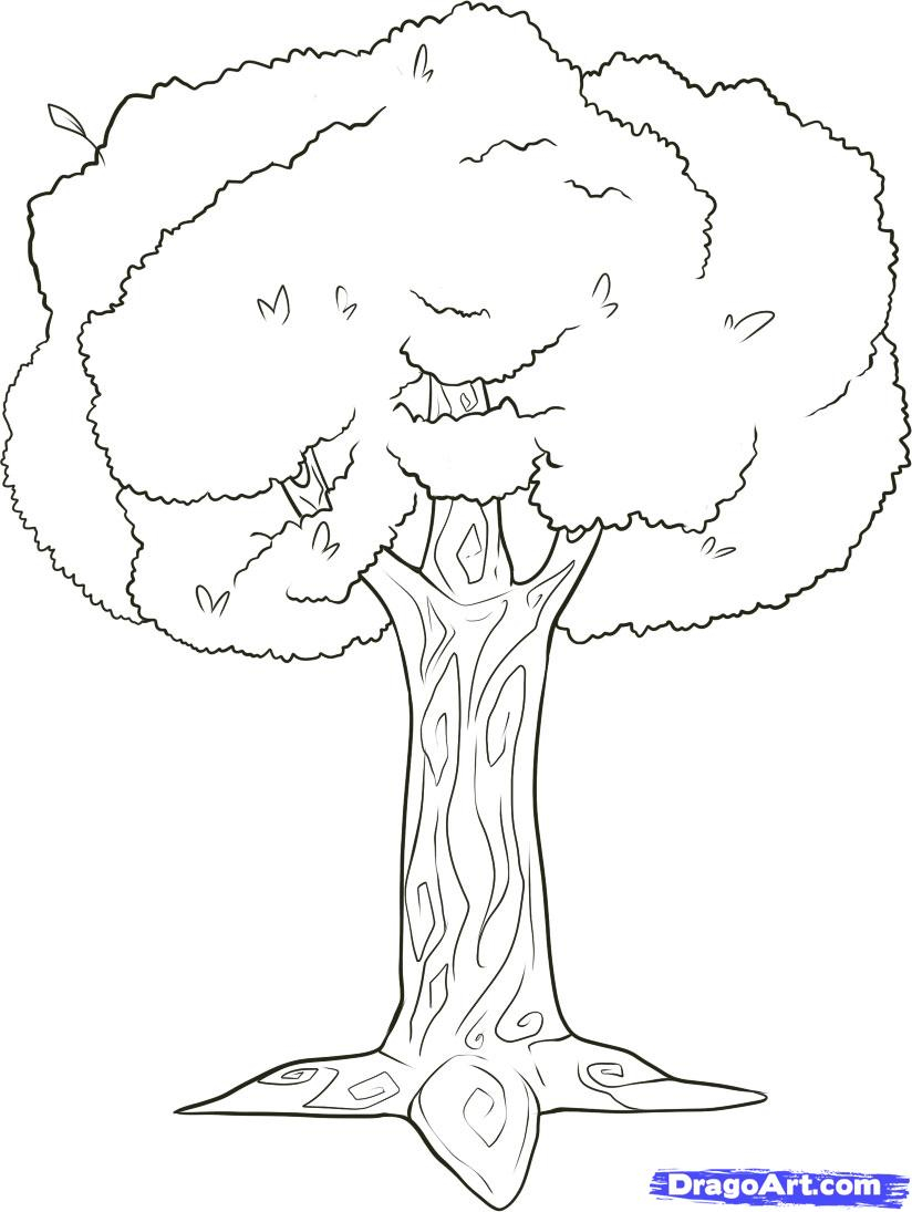 824x1095 A Drawing Of A Tree How To Draw Branches, Step By Step, Trees, Pop