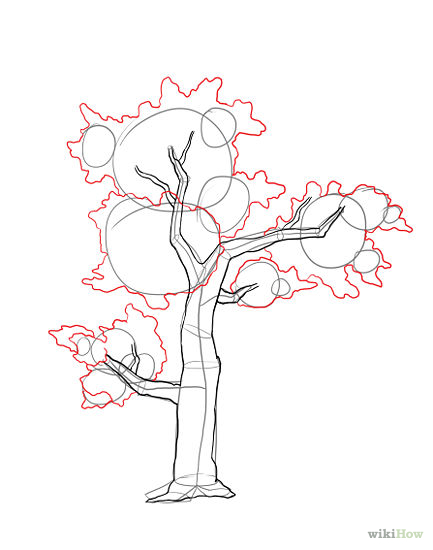 433x550 Drawing Trees Step By Step